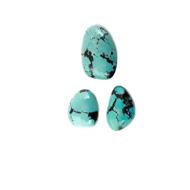 Arizonian Turquoise Stone